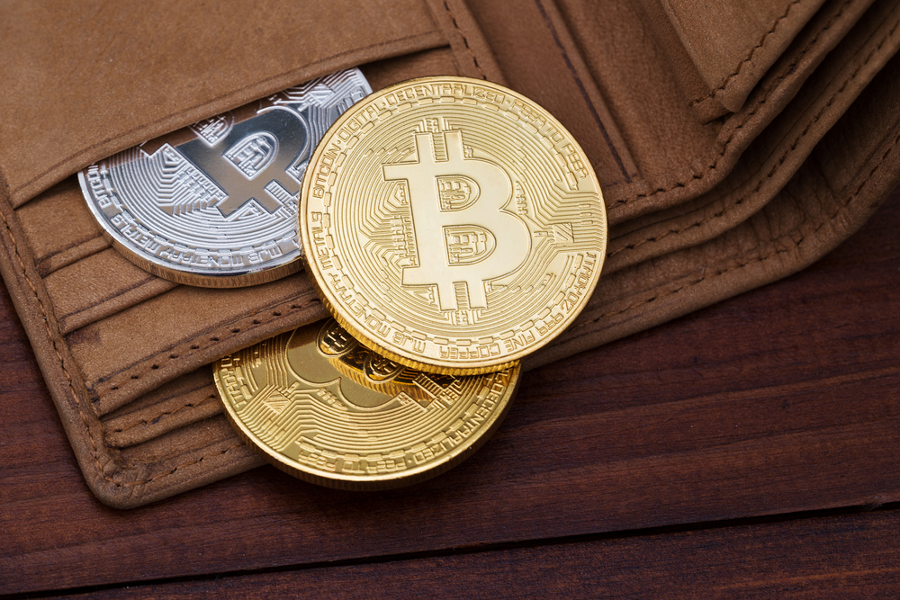 Kripto denarnice – Kje hranimo kriptovalute?